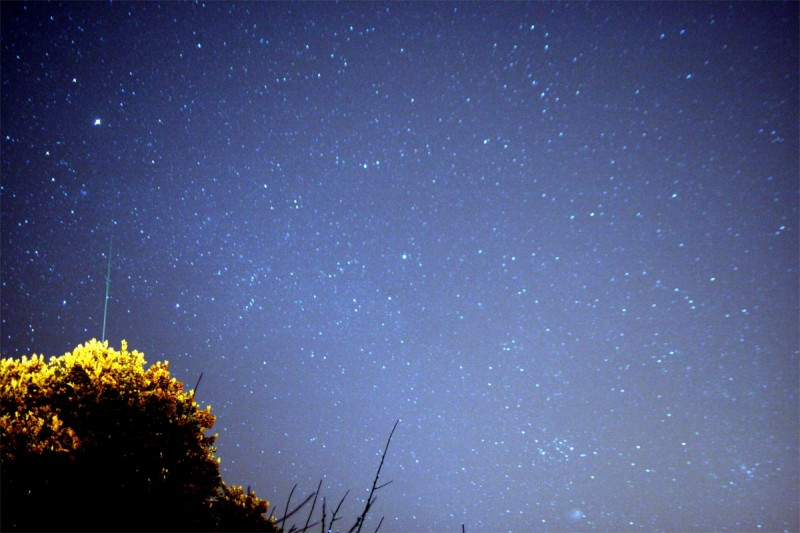 Comet_holmes_and_Geminid121307