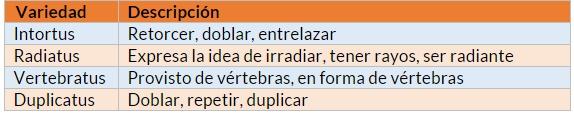 Tabla 2: Descripción de las variedades pertenecientes al género Cirrus