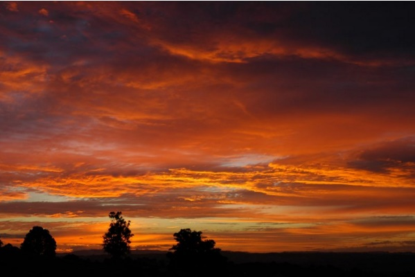Figura 2: Imagen realizada en McLeans Ridges, Australia, donde se pueden apreciar altostratus en un atardecer. Fuente: http://www.australiasevereweather.com/