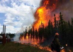 Incendios forestales y su relación con la meteorología